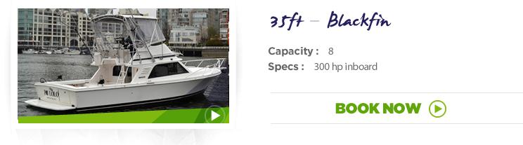 38 ft - Chris Craft - Sport Fisherman